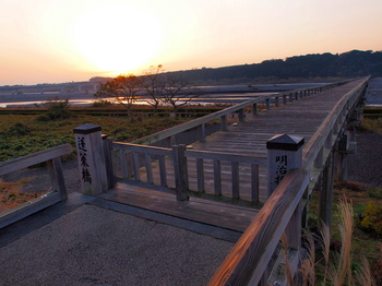 朝日の蓬莱橋.jpg
