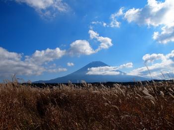 朝霧の富士.jpg